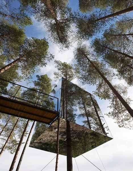 E 5 – L HOME_family_tree_hotel-sweden-4
